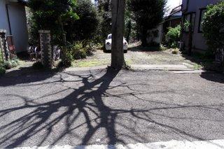 0002_RICOH R8       _2008-04-01 12-38-13.JPG