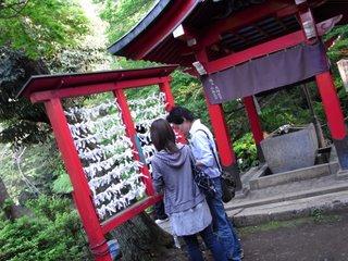 0020_RICOH R8       _2008-04-30 16-11-16.JPG