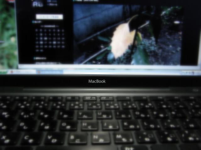 3872_RICOH R8       _2008-06-20 12-40-10.JPG